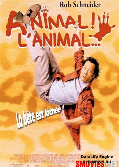 Animal / ცხოველი (ქართულად )